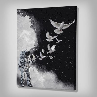 Astro Dove Space Canvas Decor