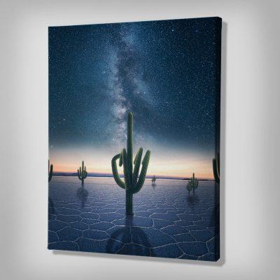 Cactastic Canvas Art