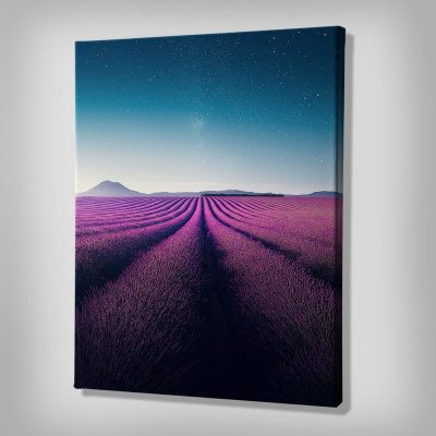 Ark Rebel Lavender Nights Bedroom Wall Art