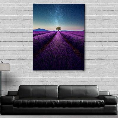 Ark Rebel Lavender by Night Canvas Art